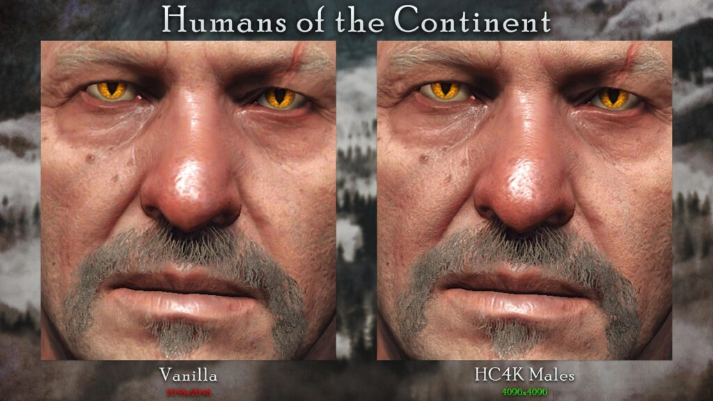 Witcher 3 HD Texture Pack Overhauls Textures in the Game